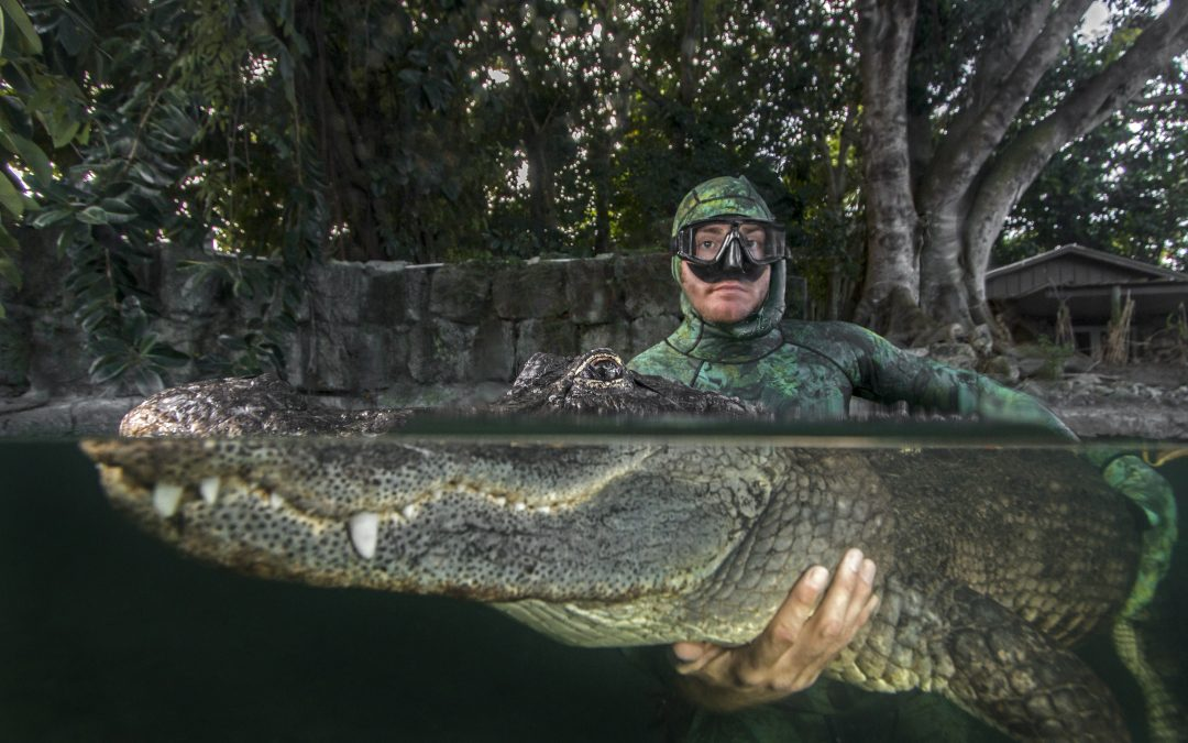 "Underwater Shark Photography with ""Gatorboy"" Chris Gillette"