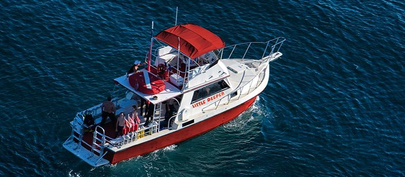 Captain Sl8tr & Little Deeper Charters: New Ownership, Rebranding
